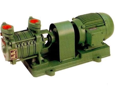 50Hz 2.3A 617CD22 THOMAS 617CD22 Pump 220V